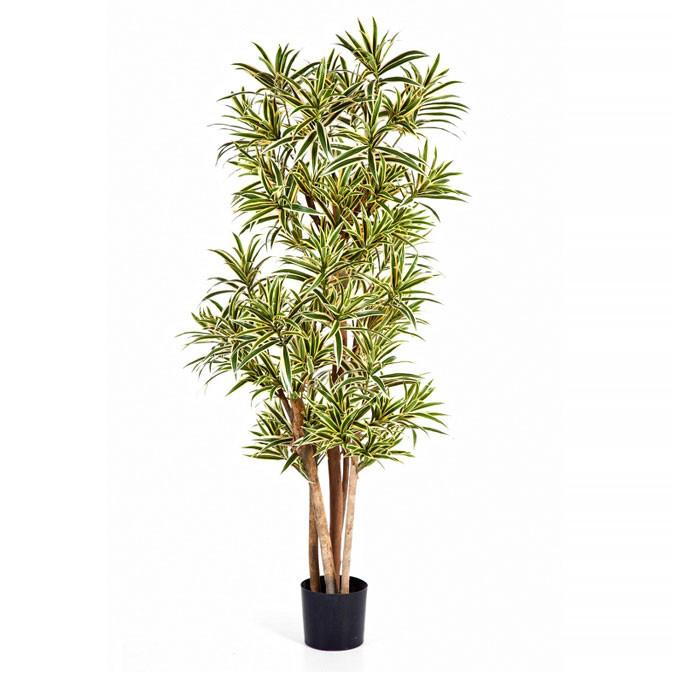 Plantas e Arvores Artificiais - Dracaerna Reflexa| Darden | Importação, Produção e Comercialização de Plantas e Árvores Artificiais