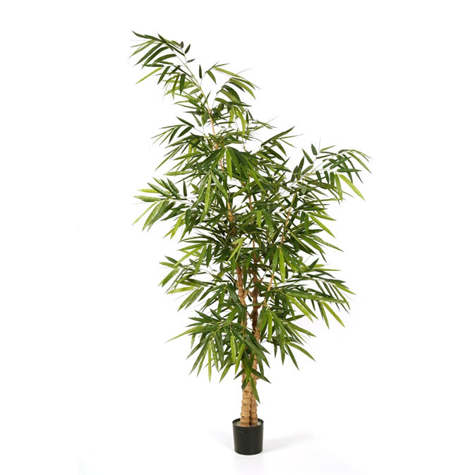 Darden | Importação, Produção e Comercialização de Plantas e Árvores Artificiais – Bambu Budha