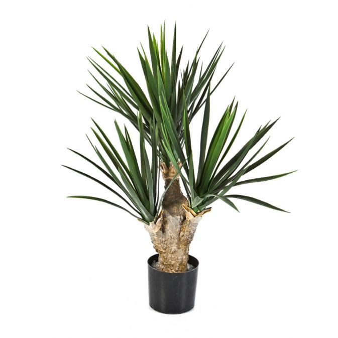 Darden | Importação, Produção e Comercialização de Plantas e Árvores Artificiais – Yucca Baby