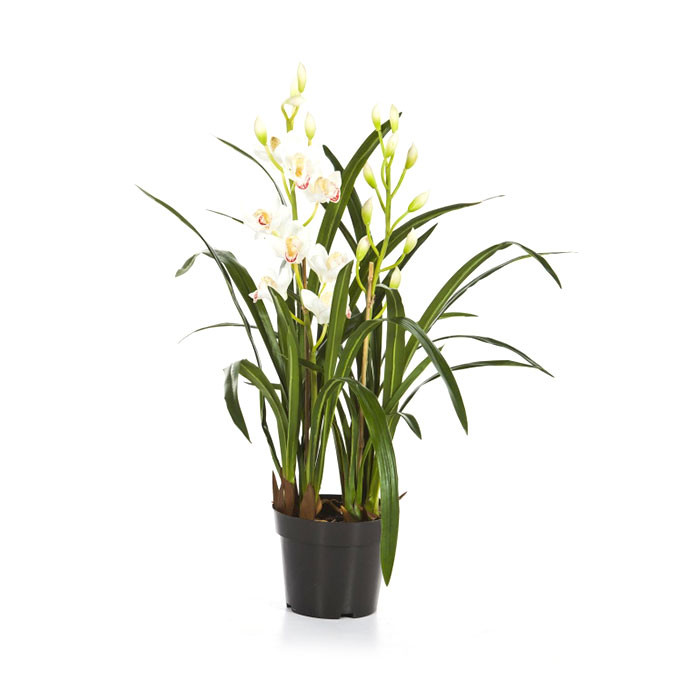 Plantas e Arvores Artificiais - | Darden | Importação, Produção e Comercialização de Plantas e Árvores Artificiais - Orquídea Cimbidium