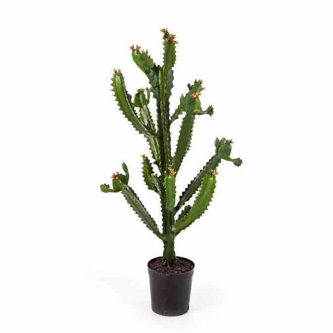 Plantas Artificiais - Euphorbia Cactus| Darden | Importação, Produção e Comercialização de Plantas e Árvores Artificiais
