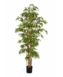 Arvores Artificiais - Bambu New Japanese | Darden | Importação, Produção e Comercialização de Plantas e Árvores Artificiais