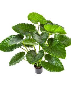 Darden | Importação, Produção e Comercialização de Plantas e Árvores Artificiais - Plantas Artificiais-Alocasia
