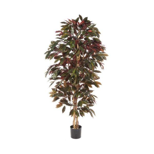 Darden | Importação, Produção e Comercialização de Plantas e Árvores Artificiais – Capensia