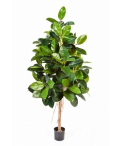 Arvores Artificiais - Ficus Elastica artificial| Darden | Importação, Produção e Comercialização de Plantas e Árvores Artificiais