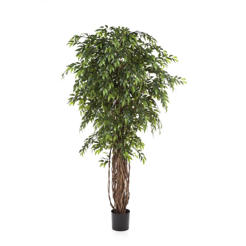 Arvores Artificiais - Ficus French| Darden | Importação, Produção e Comercialização de Plantas e Árvores Artificiais