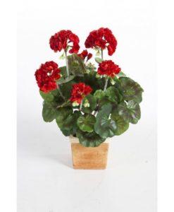 Plantas com flor - Geranio | Darden | Importação, Produção e Comercialização de Plantas e Árvores Artificiais