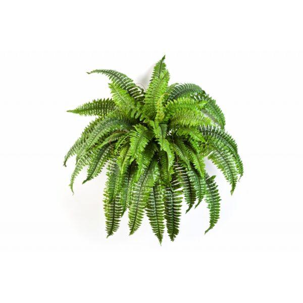 Plantas e Arvores Artificiais - Feto| Darden | Importação, Produção e Comercialização de Plantas e Árvores Artificiais