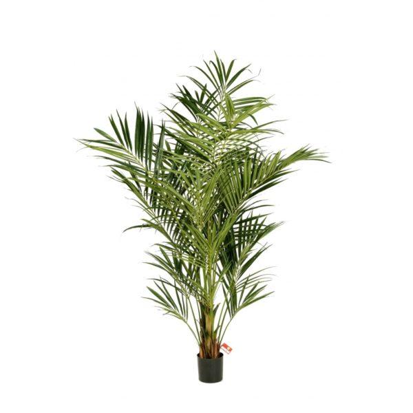 Plantas Arvores Exoticas - Palmeira | Darden | Importação, Produção e Comercialização de Plantas e Árvores Artificiais