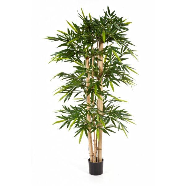 Darden | Importação, Produção e Comercialização de Plantas e Árvores Artificiais – Bambu New Giant