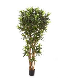 Arvores Artificiais - Croton | Darden | Importação, Produção e Comercialização de Plantas e Árvores Artificiais