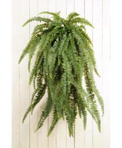 Plantas Artificiais - Feto | Darden | Importação, Produção e Comercialização de Plantas e Árvores Artificiais