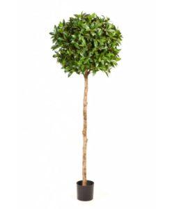 Arvores Artificiais - Cedro | Darden | Importação, Produção e Comercialização de Plantas e Árvores Artificiais