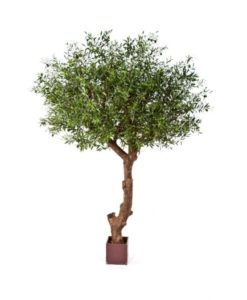 Arvores Artificiais - Oliveiras| Darden | Importação, Produção e Comercialização de Plantas e Árvores Artificiais