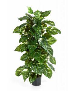 Plantas Artificiais - Pothos | Darden | Importação, Produção e Comercialização de Plantas e Árvores Artificiais