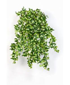 Plantas Artificiais - Heras   Darden   Importação, Produção e Comercialização de Plantas e Árvores Artificiais