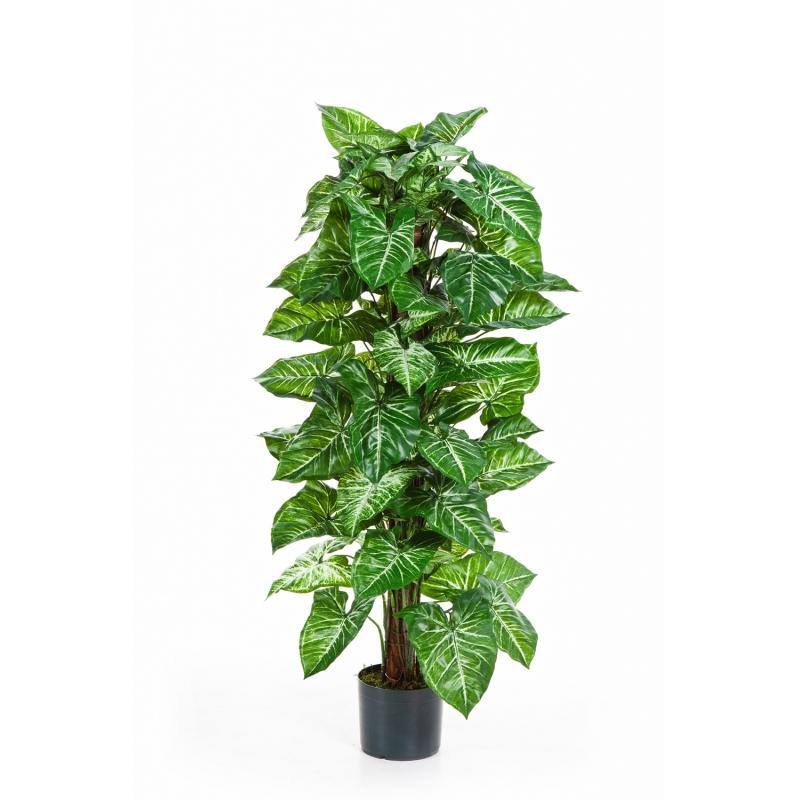Plantas Artificiais - Nepthytis | Darden | Importação, Produção e Comercialização de Plantas e Árvores Artificiais