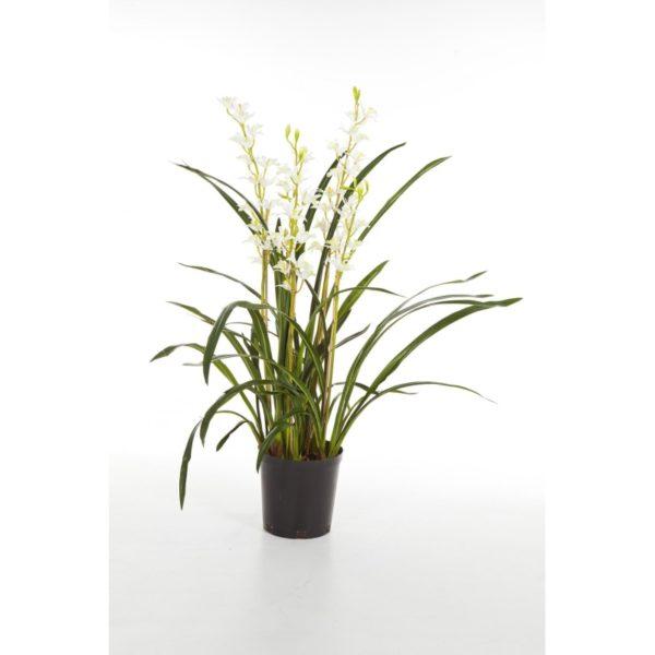Plantas e Arvores Artificiais - Orquidea | Darden | Importação, Produção e Comercialização de Plantas e Árvores Artificiais
