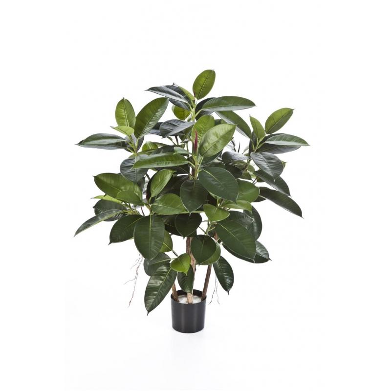 Plantas Arvores Exoticas - Arvore da Borracha | Darden | Importação, Produção e Comercialização de Plantas e Árvores Artificiais
