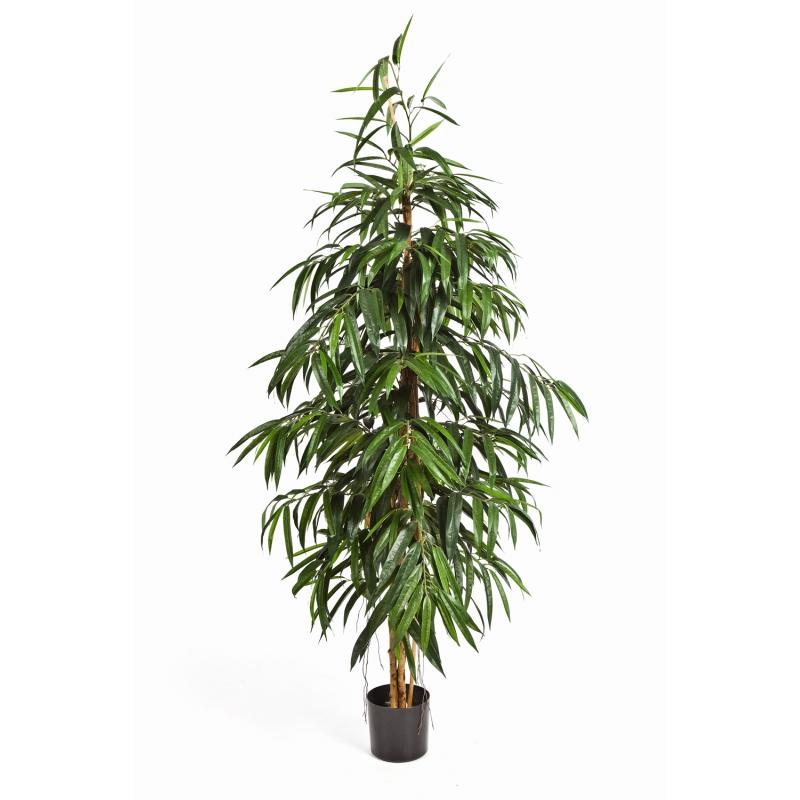Arvores Artificiais - Longifolia   Darden   Importação, Produção e Comercialização de Plantas e Árvores Artificiais