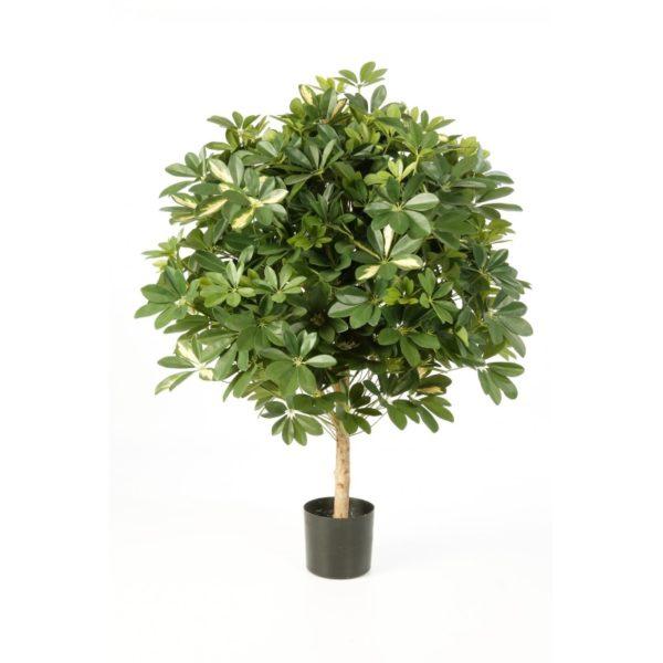 Plantas Artificiais - Schefflera | Darden | Importação, Produção e Comercialização de Plantas e Árvores Artificiais