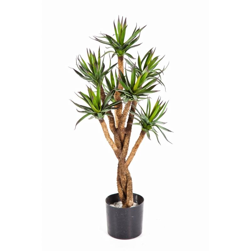 Plantas e Arvores Exoticas - Agave | Darden | Importação, Produção e Comercialização de Plantas e Árvores Artificiais