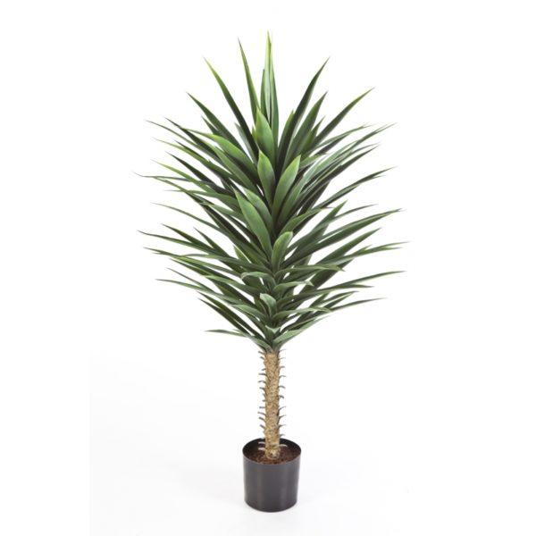 Plantas e Arvores Exoticas - Yucca | Darden | Importação, Produção e Comercialização de Plantas e Árvores Artificiais