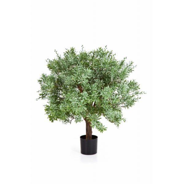 Plantas e Arvores Exoticas - Crossostephium | Darden | Importação, Produção e Comercialização de Plantas e Árvores Artificiais
