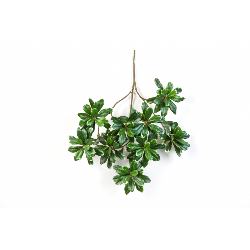 Plantas Artificiais - Haste Pittosporum | Darden | Importação, Produção e Comercialização de Plantas e Árvores Artificiais