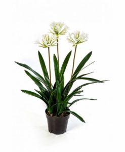 Plantas Artificiais - Agapanthus spider| Darden | Importação, Produção e Comercialização de Plantas e Árvores Artificiais