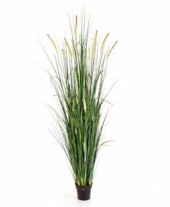 Plantas Artificiais - Foxtail Grass | Darden | Importação, Produção e Comercialização de Plantas e Árvores Artificiais