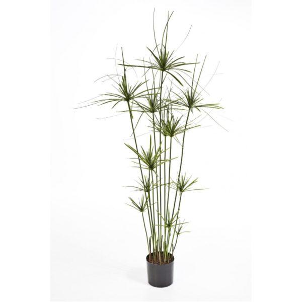 Plantas Artificiais - Papyrus Elegante   Darden   Importação, Produção e Comercialização de Plantas e Árvores Artificiais