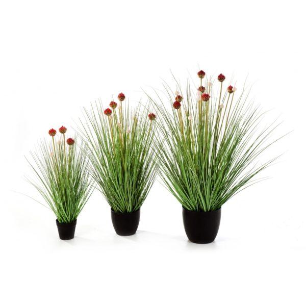Plantas Artificiais - Allium Grass | Darden | Importação, Produção e Comercialização de Plantas e Árvores Artificiais