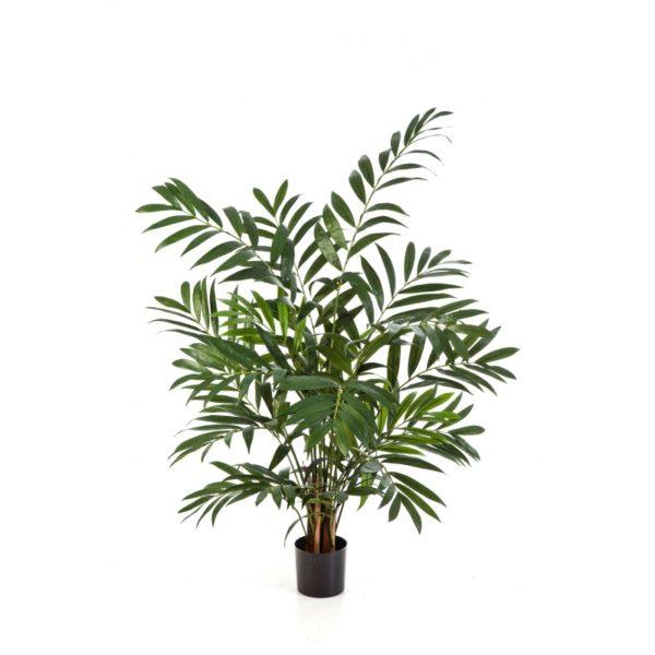 Plantas Arvores Exoticas - Palmeira Parlour | Darden | Importação, Produção e Comercialização de Plantas e Árvores Artificiais