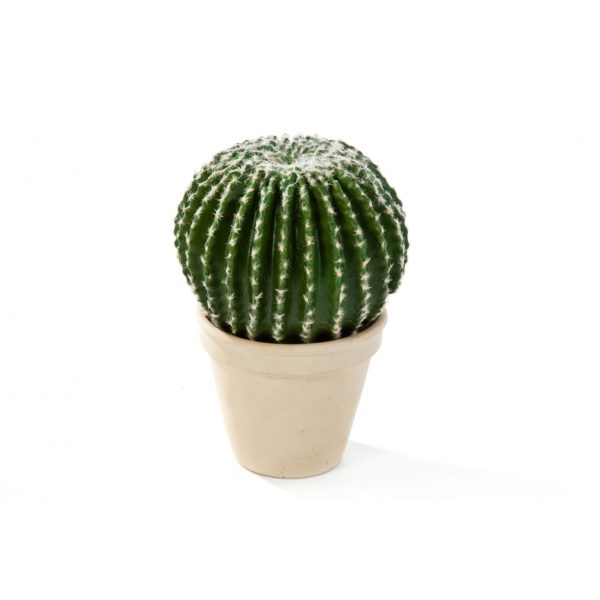 Plantas e Arvores Artificiais - Barrel Cactus| Darden | Importação, Produção e Comercialização de Plantas e Árvores Artificiais