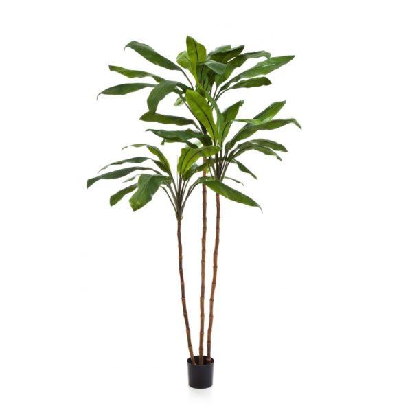 Arvores Artificiais - Cordyline Surculosa | Darden | Importação, Produção e Comercialização de Plantas e Árvores Artificiais