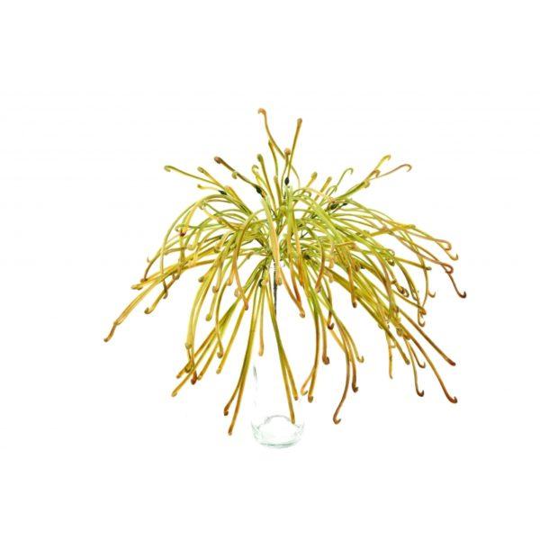 Plantas Artificiais - Flocked Grass | Darden | Importação, Produção e Comercialização de Plantas e Árvores Artificiais