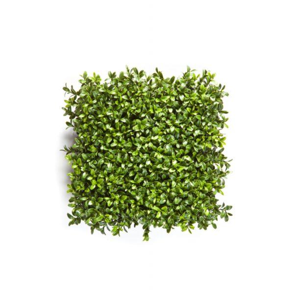 Plantas e Arvores Artificiais - Buxus Placa | Darden | Importação, Produção e Comercialização de Plantas e Árvores Artificiais - Buxus Bola