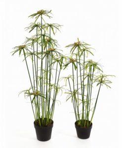Plantas Artificiais - Papyrus Alternifolius | Darden | Importação, Produção e Comercialização de Plantas e Árvores Artificiais