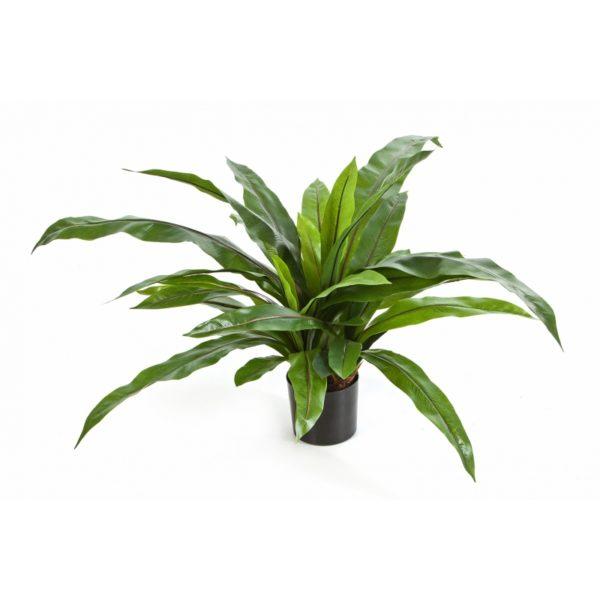 Plantas Artificiais - Asplenium | Darden | Importação, Produção e Comercialização de Plantas e Árvores Artificiais