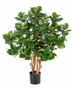 Arvores Artificiais - Clusia | Darden | Importação, Produção e Comercialização de Plantas e Árvores Artificiais