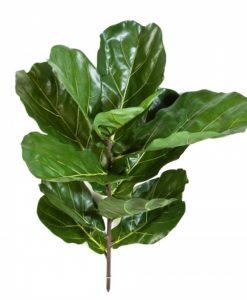 Plantas Artificiais - Haste Ficus Lyrata   Darden   Importação, Produção e Comercialização de Plantas e Árvores Artificiais