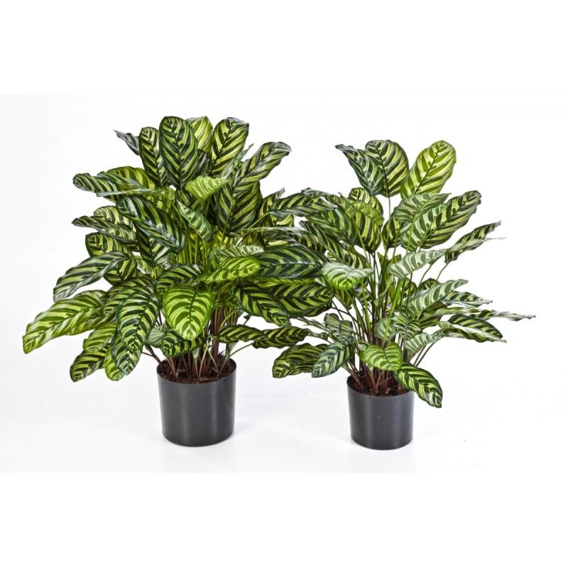 Plantas Artificiais - Calathea | Darden | Importação, Produção e Comercialização de Plantas e Árvores Artificiais